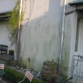 Fassadenreinigung selber machen