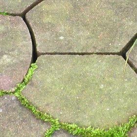 Grünbelag auf der Terrasse