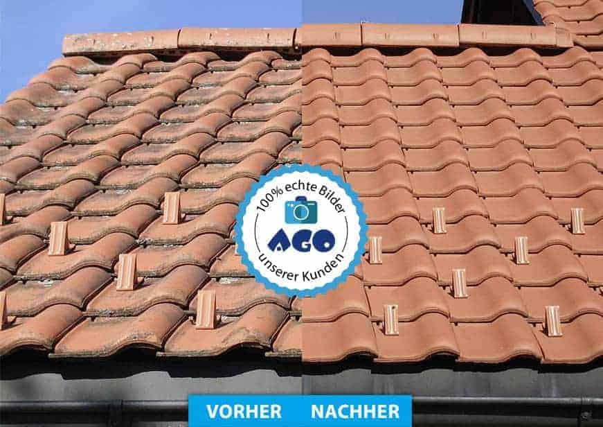 Turbo Algenentferner & Flechtenentferner AGO Quart - extrem wirksam bei ZR65